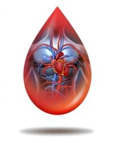 - factori de risc diabet si hta 31 - Factorii de risc comuni ai diabetului și bolilor cardiovasculare